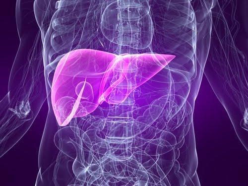 Симптомы и лечение гепатита