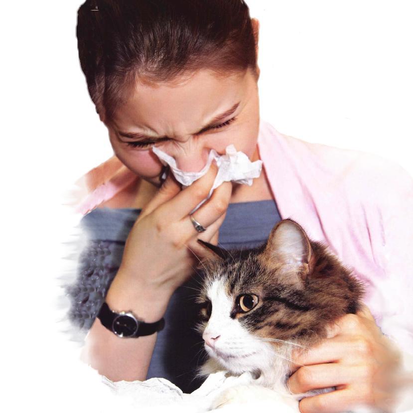 Аллергические реакции и сыпь