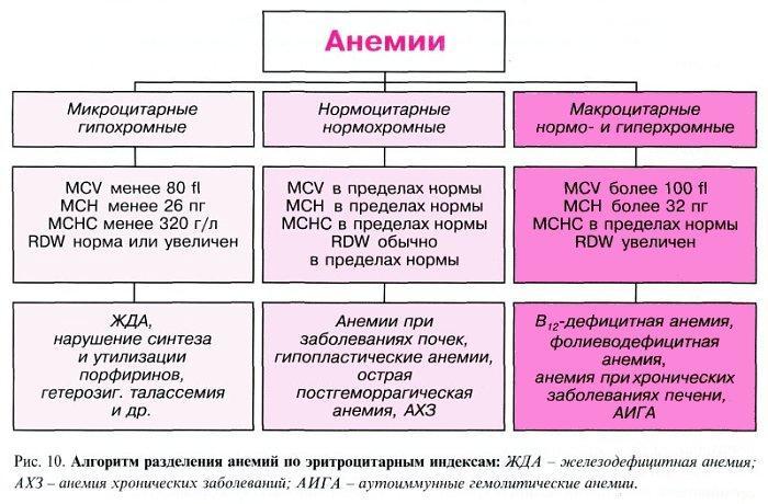 Классификация анемий