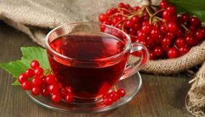 Лекарство из ягод калины