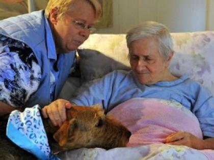 Чем более прогрессирует болезнь, тем сильнее пациент нуждается в поддержке и заботе