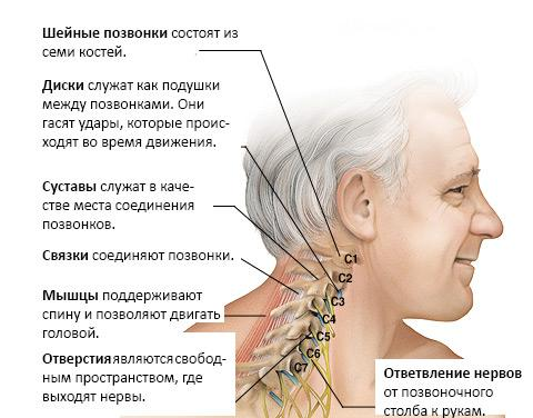 Если болит спина что колоть