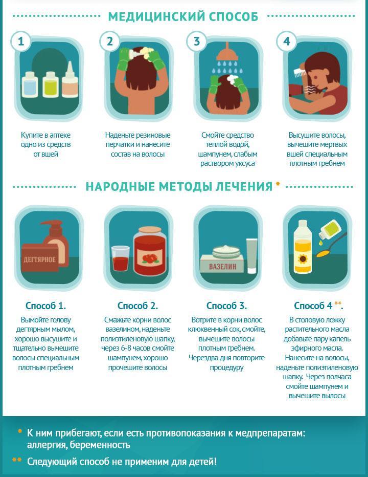 Вши лечение в домашних условиях быстро