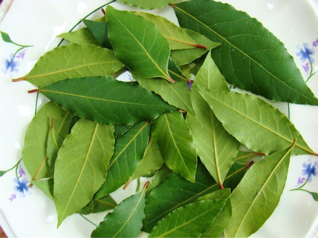 Рецепт очищения лавровым листом