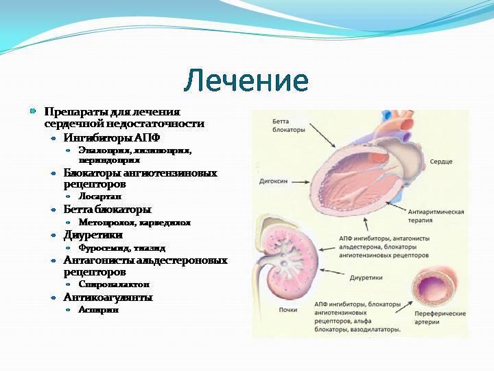 Лечение сердечной недостаточности с помощью традиционной медицины