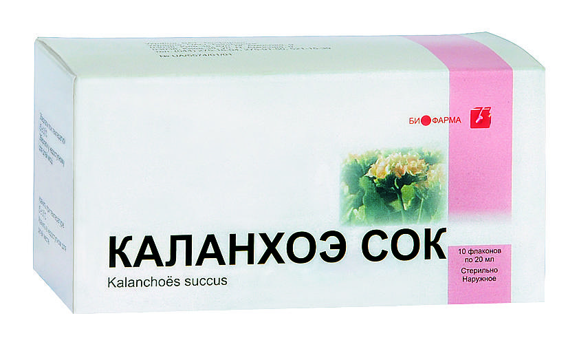 Сок каланхоэ можно использовать только разведенным с водой