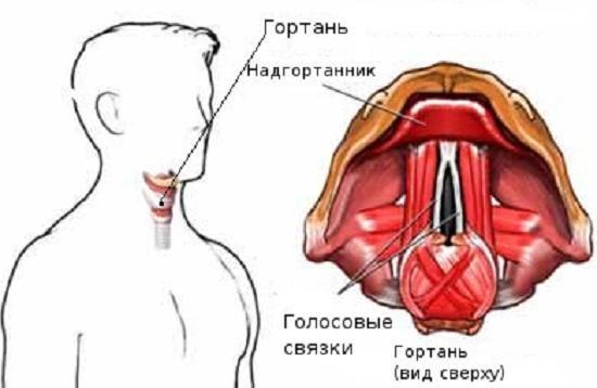 Схематичное изображение отека горла