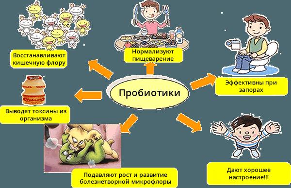 Чем полезны пробиотики