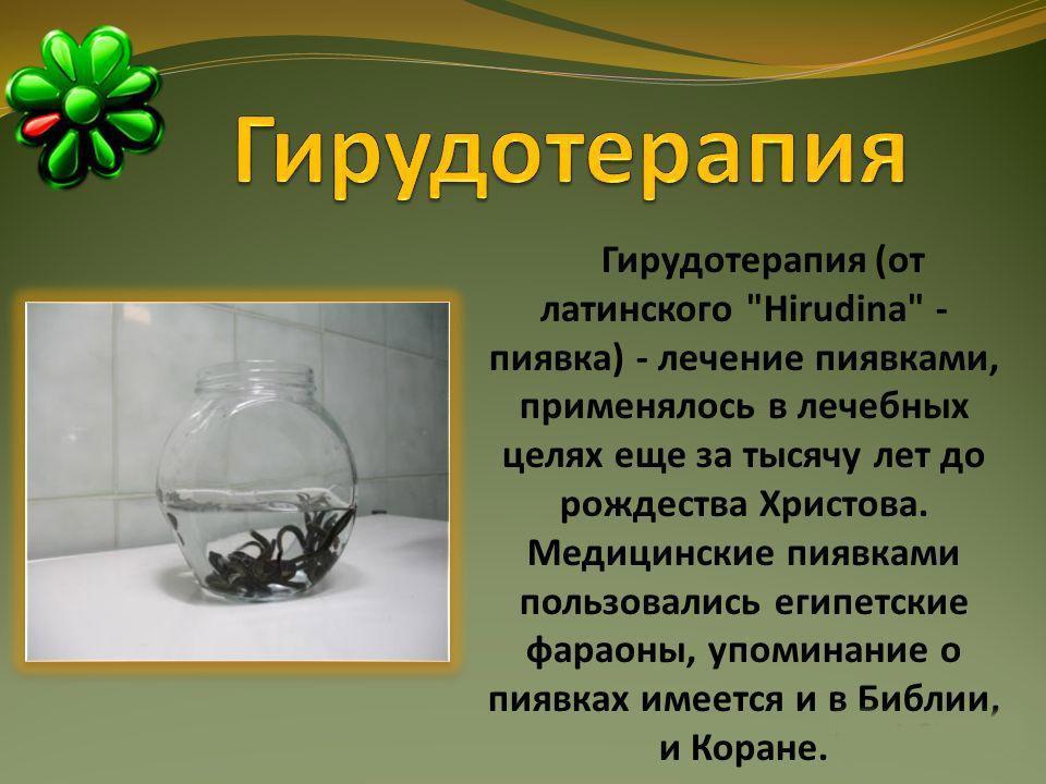 Гирудотерапия. Определение