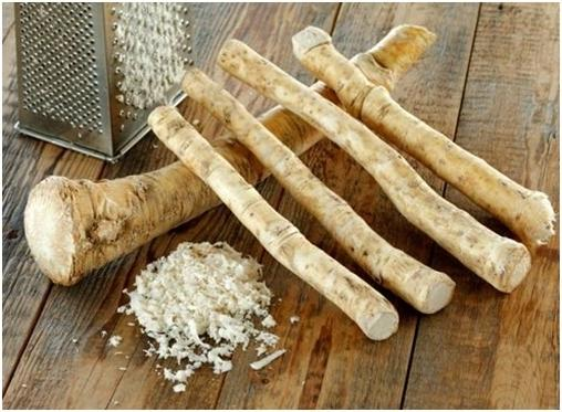 Настой из корня хрена - одно из самых эффективных средств при дисбактериозе кишечника