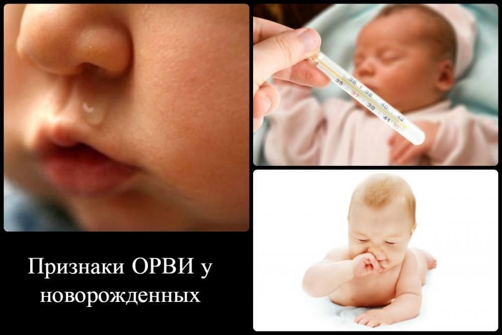 Лечение пищевой, респираторной и контактной аллергии у новорождённых и грудничков младенец