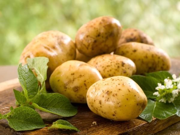 Сырой картофель обладает противовоспалительным эффектом, поэтому эффективен в борьбе с артритом