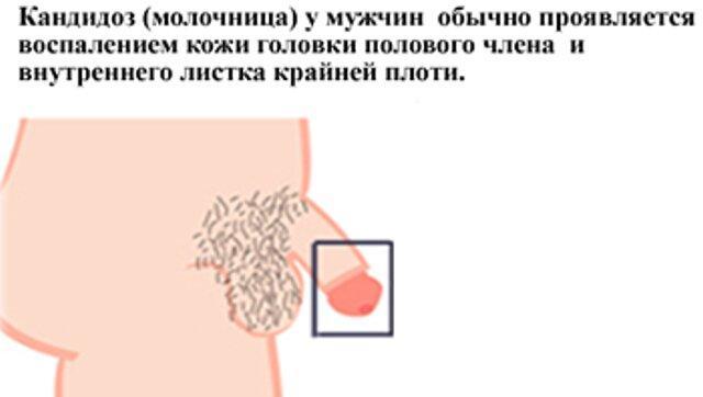 porno-muzhiki-trutsya-chlenami