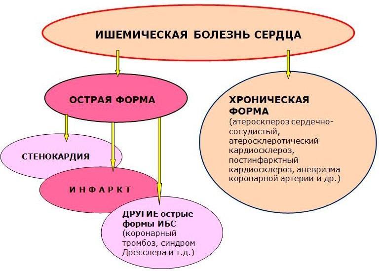 Менструация с болями до обморока