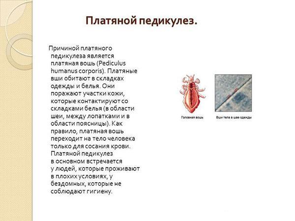 перечень препаратов для похудения одобренное минздравом рф