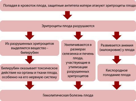 Признаки беременности при резус конфликте