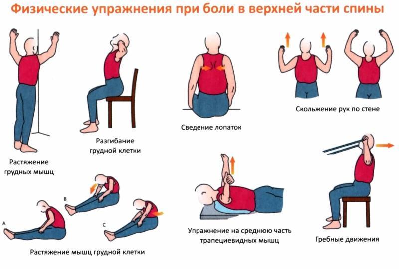 Упражнения при остеохондрозе грудного отдела