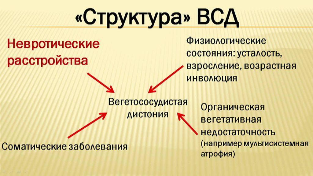 Вегето-сосудистая дистония - структура