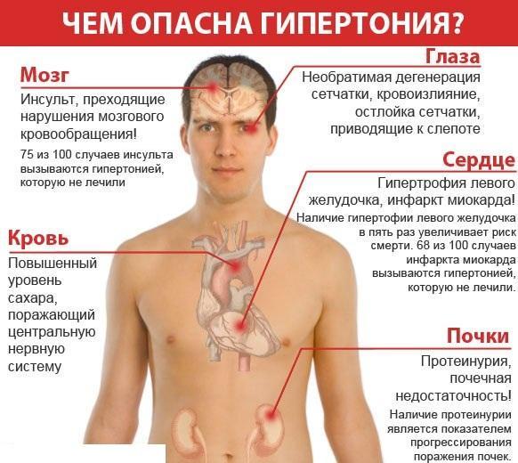 Повышенное артериальное давление оказывает повреждающее воздействие на сосуды и питаемые ими органы