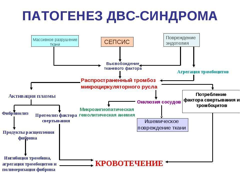 Патогенез ДВС-синдрома