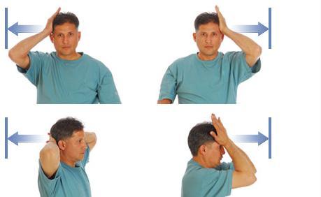 Давим руками на голову, напрягая мышцы шеи