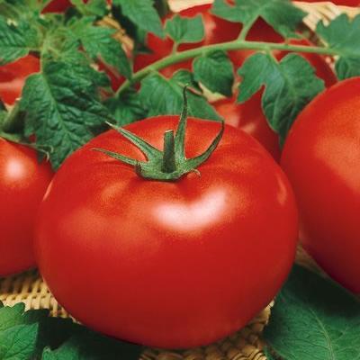 Отказываемся от томатов