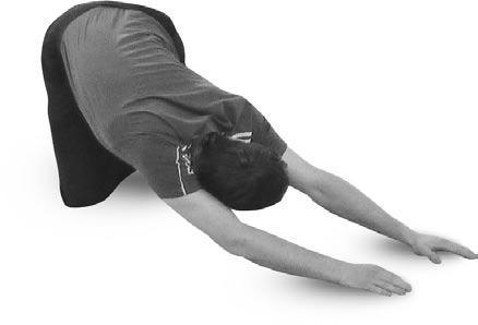 Упражнение стоя на четвереньках