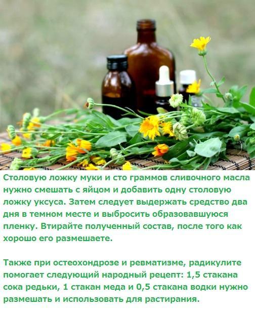 Лечение остеохондроза позвоночника народными средствами