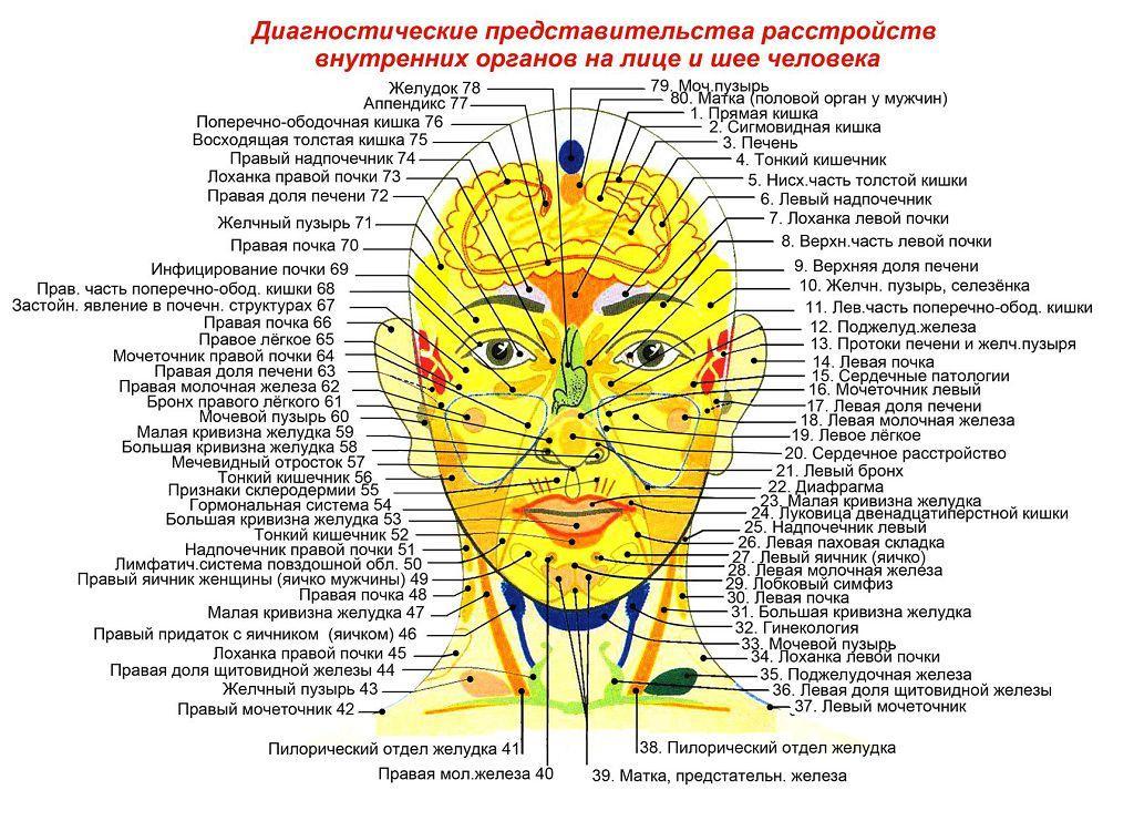 Болезни внутренних органов - взаимосвязи с реакцией кожи на лице