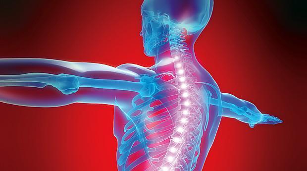 Болезни позвоночника и связанные с этим боли в груди
