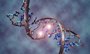Генетическая склонность