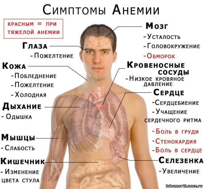 Железосодержащие препараты при анемии список