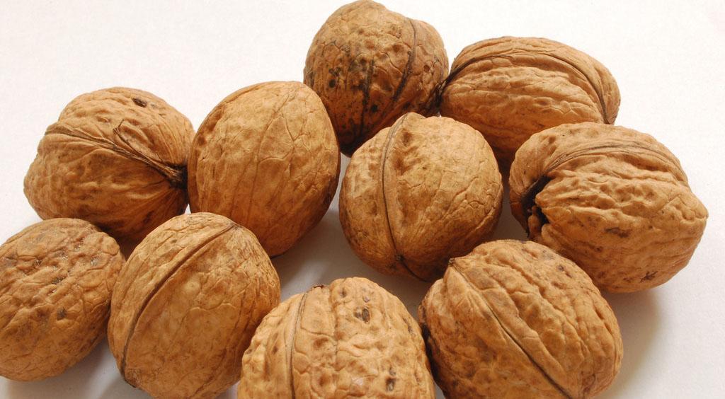 Скорлупа грецкого ореха для приготовления лечебного настоя