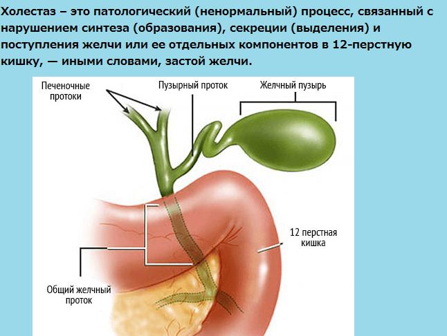 Как подготовится к сдаче крови на гепатит
