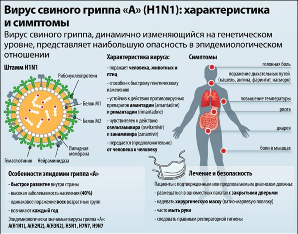 Свиной грипп: симптомы