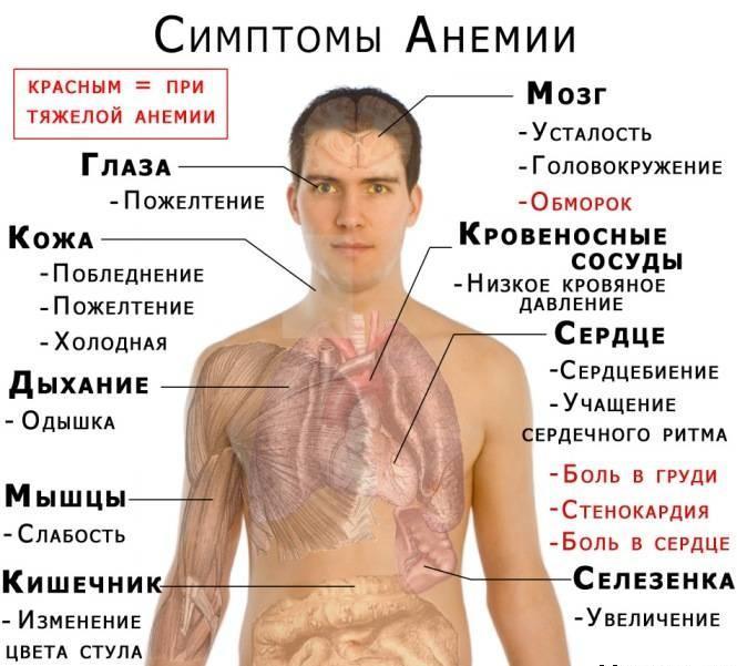 Симптомы анемии Показать на странице Открыть в полном размере