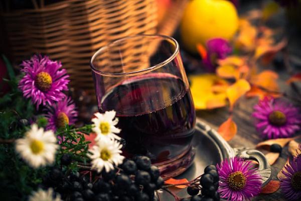 Настой рябины черноплодной запрещено употреблять при наличии проблем с кровью