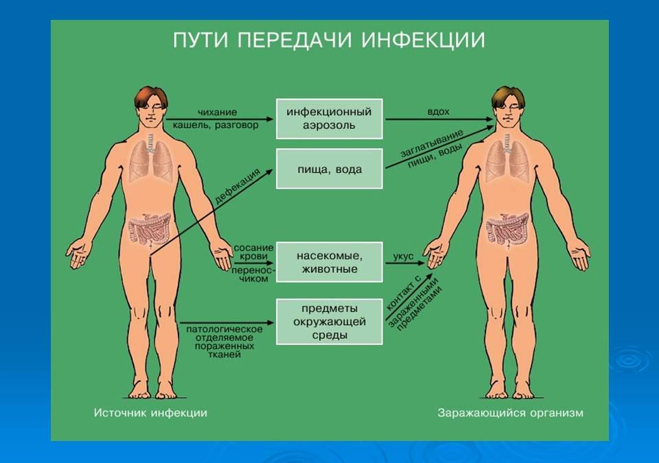лечится ли гепатит ц