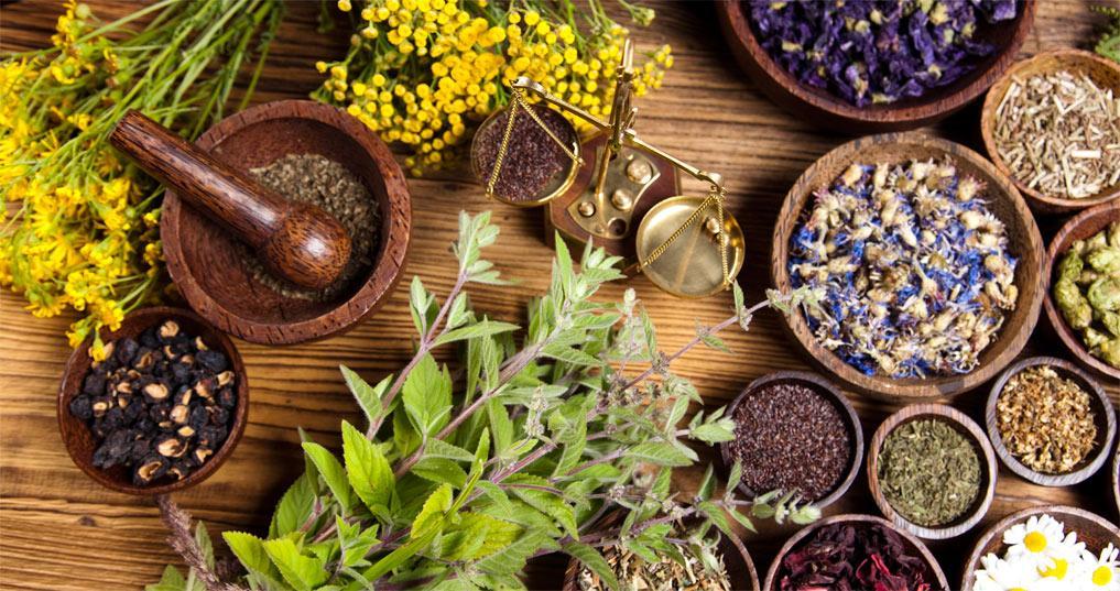 Травянной сбор с медом помогает быстро избавиться от вегето-сосудистой дистонии