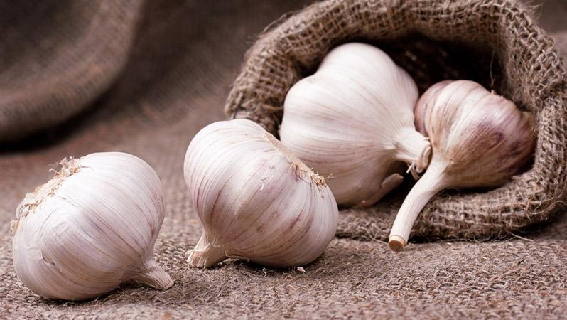 Чеснок - простое и действенное средство в борьбе с грибком ногтей