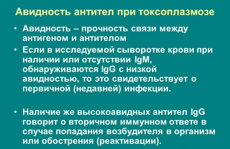 avidnost-antitel-pri-toksoplazmoze - MedExplorer - информационный ...
