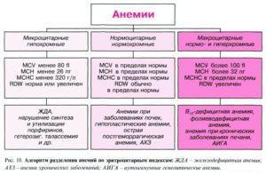 Алгоритм разделения анемий по эритроцитарным индексам