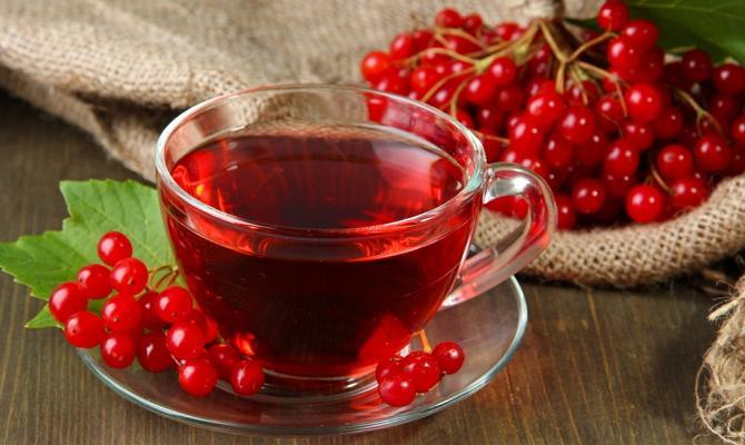 Калиновый чай для лечения потери голоса