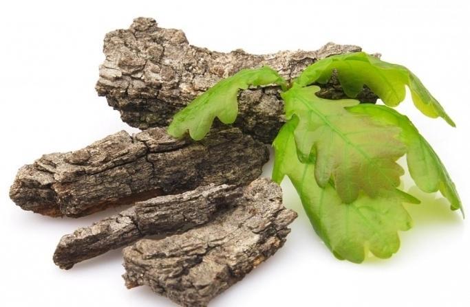 Кора дуба эффективно применяется для лечения дисбактериоза