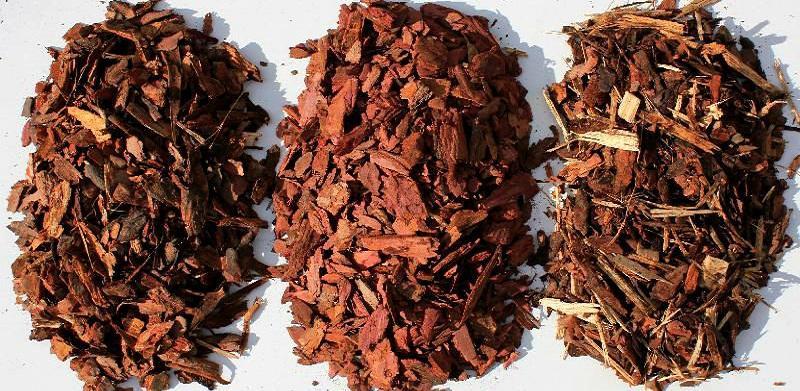 Настой из коры лиственницы применяется для лечения на первых стадиях послеоперационной грыжи