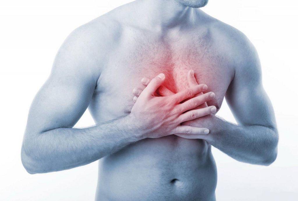 Створка переднего клапана сердца