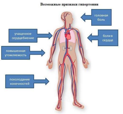 комплексное лечение для очищения организма от паразитов