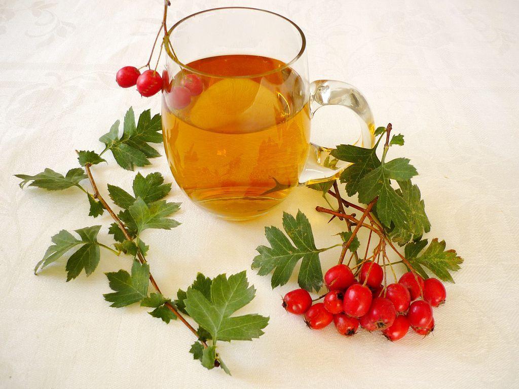 Чай с боярышником  поможет в том случае, когда потеря голоса вызвана стрессом и постоянным страхом