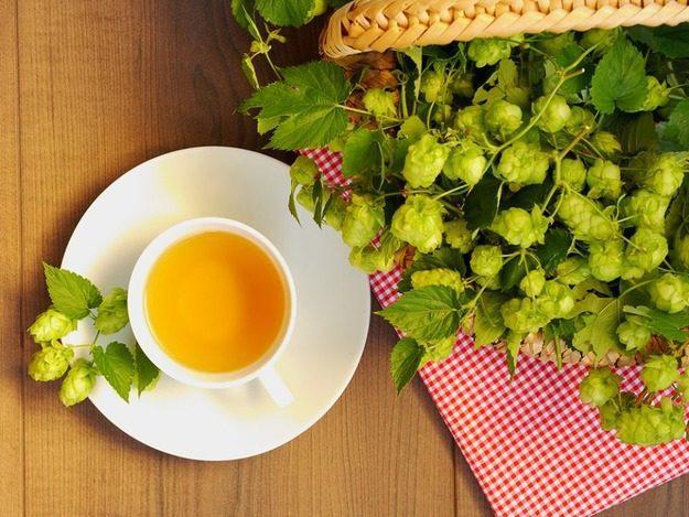 Чай с хмелем отлично повышает потенцию