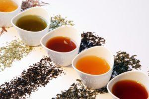 Все виды чая производятся из листьев одного и того же растения